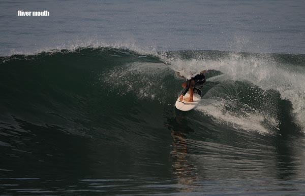 Image courtesy of www.baliwaves.com