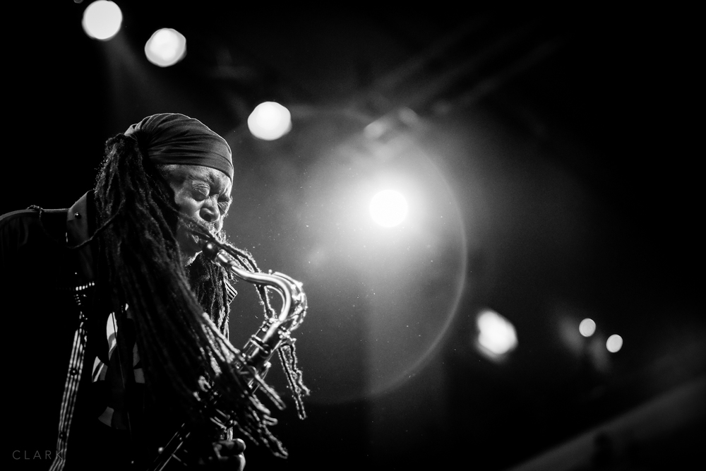007_DerekClarkPhoto-Courtney_Pine.jpg