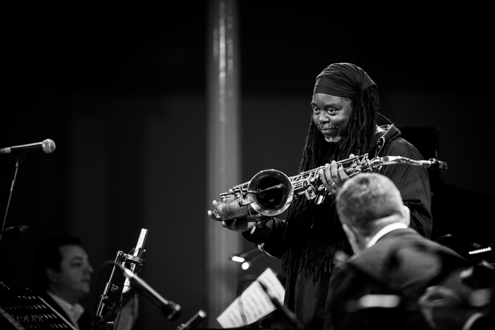 012_DerekClarkPhoto-Courtney_Pine.jpg