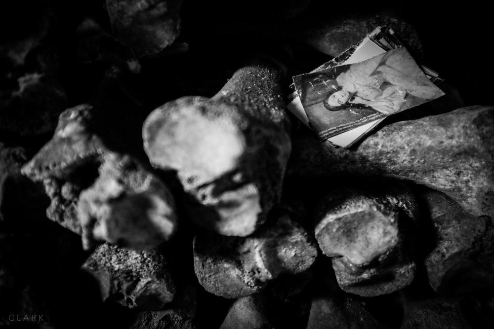 -Catacobes-DerekClarkPhoto-003