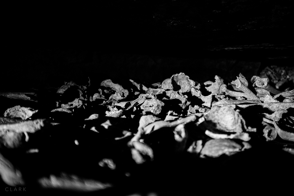 007_DerekClarkPhoto-Paris_Catacombs.jpg