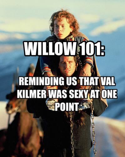 willow 101.jpg