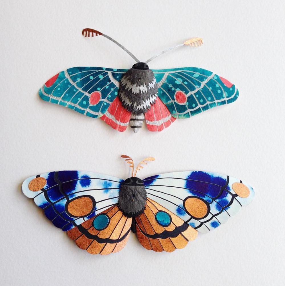 Tara Galuska Colourful Paper Moths