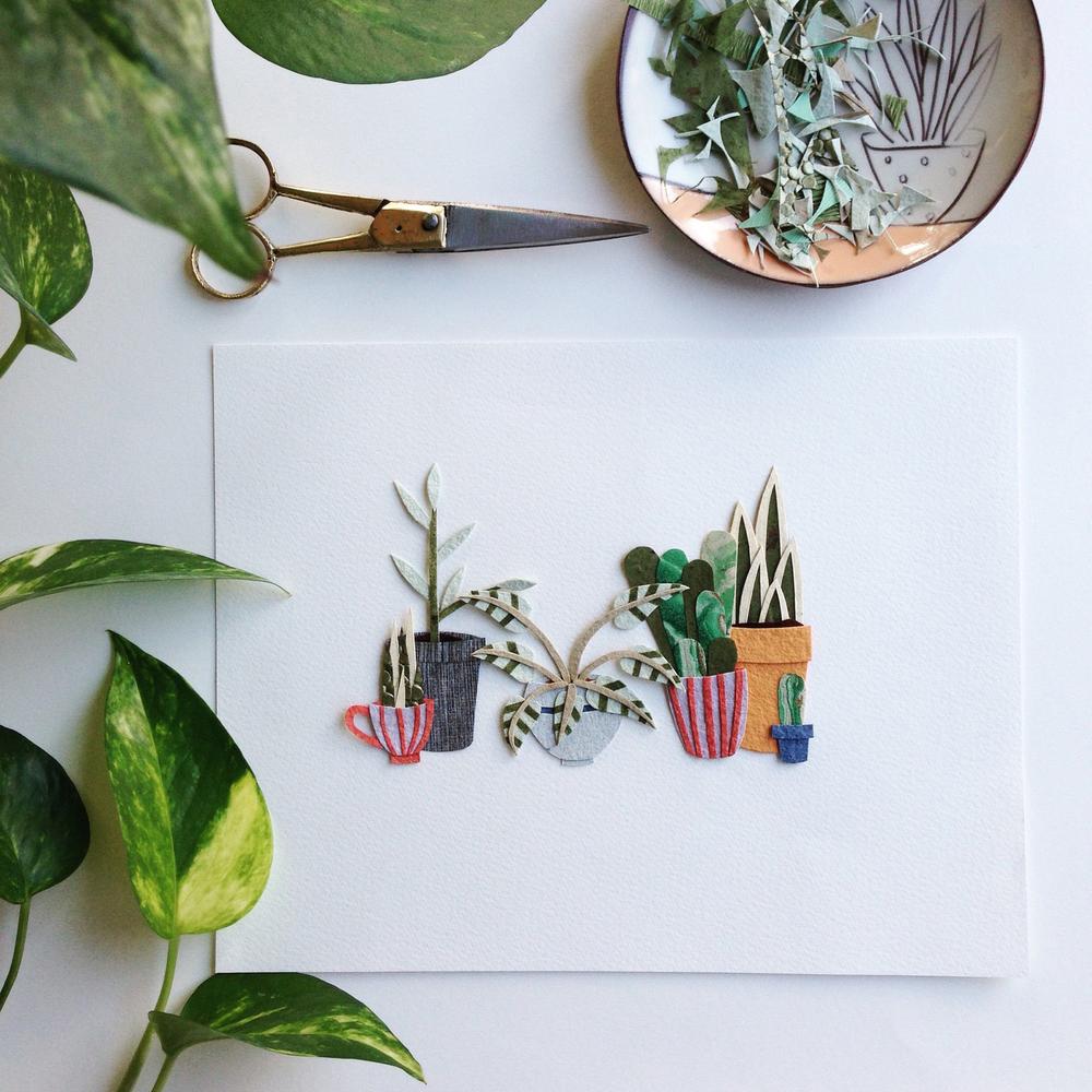 Tara Galusksa Paper Plants