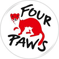 FOUR PAWS.jpg