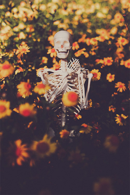 WebsetP SKELETON SML 01 tomsimmonds_0000s_0001_The Skeleton Project 0037.jpg