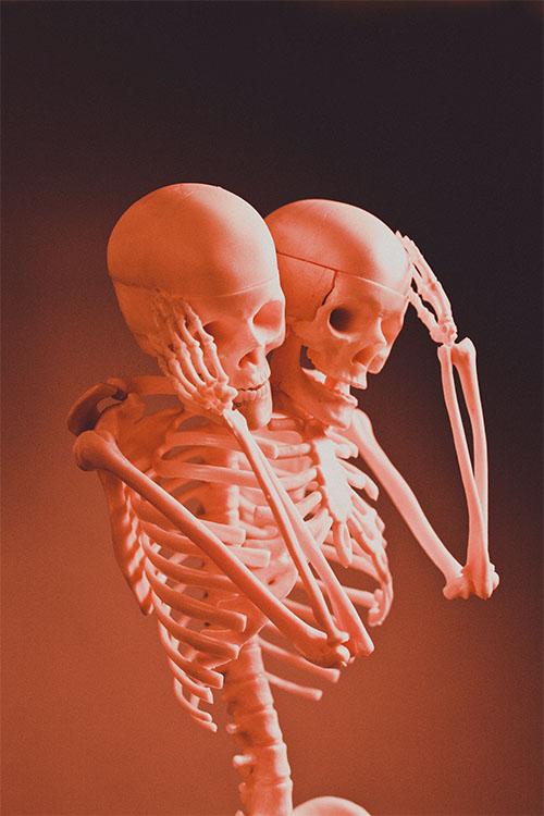 WebsetP SKELETON SML 01 tomsimmonds_0000s_0002_The Skeleton Project 0034.jpg