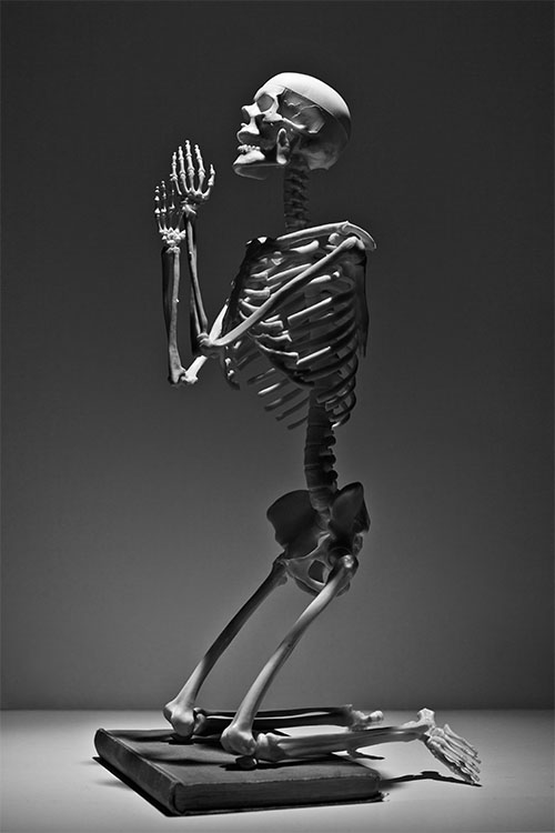 WebsetP SKELETON SML 01 tomsimmonds_0000s_0004_The Skeleton Project 0008.jpg