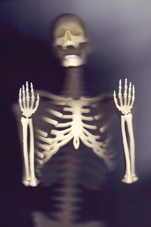 WebsetP SKELETON SML 01 tomsimmonds_0000s_0009_The Skeleton Project 0019.jpg