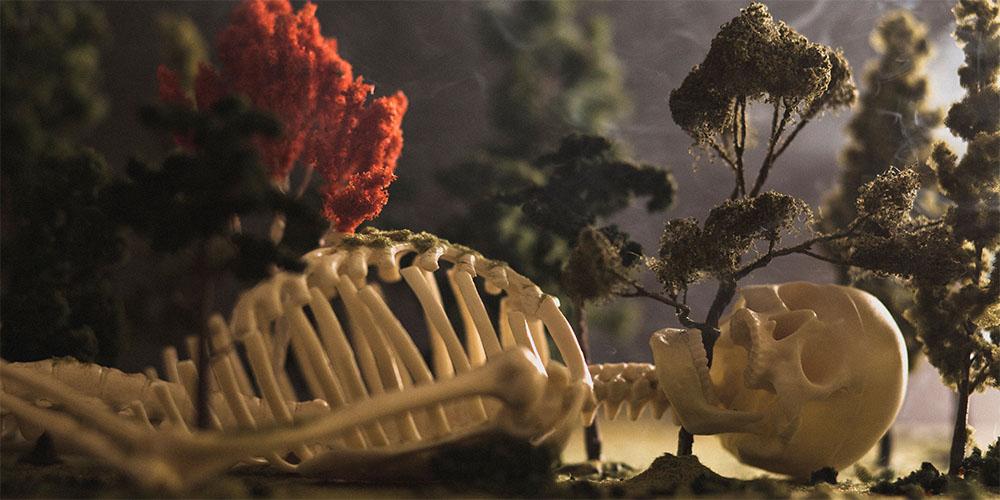 WebsetW SKELETON SML 01 tomsimmonds_0000s_0016_Skeleton Project 3 XXL_0000_The Skeleton Project 0063.jpg