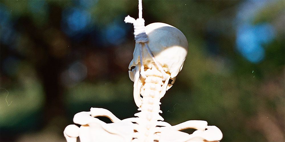 WebsetW SKELETON SML 01 tomsimmonds_0000s_0017_Skeleton Project 4 XXL_0005_10A.jpg