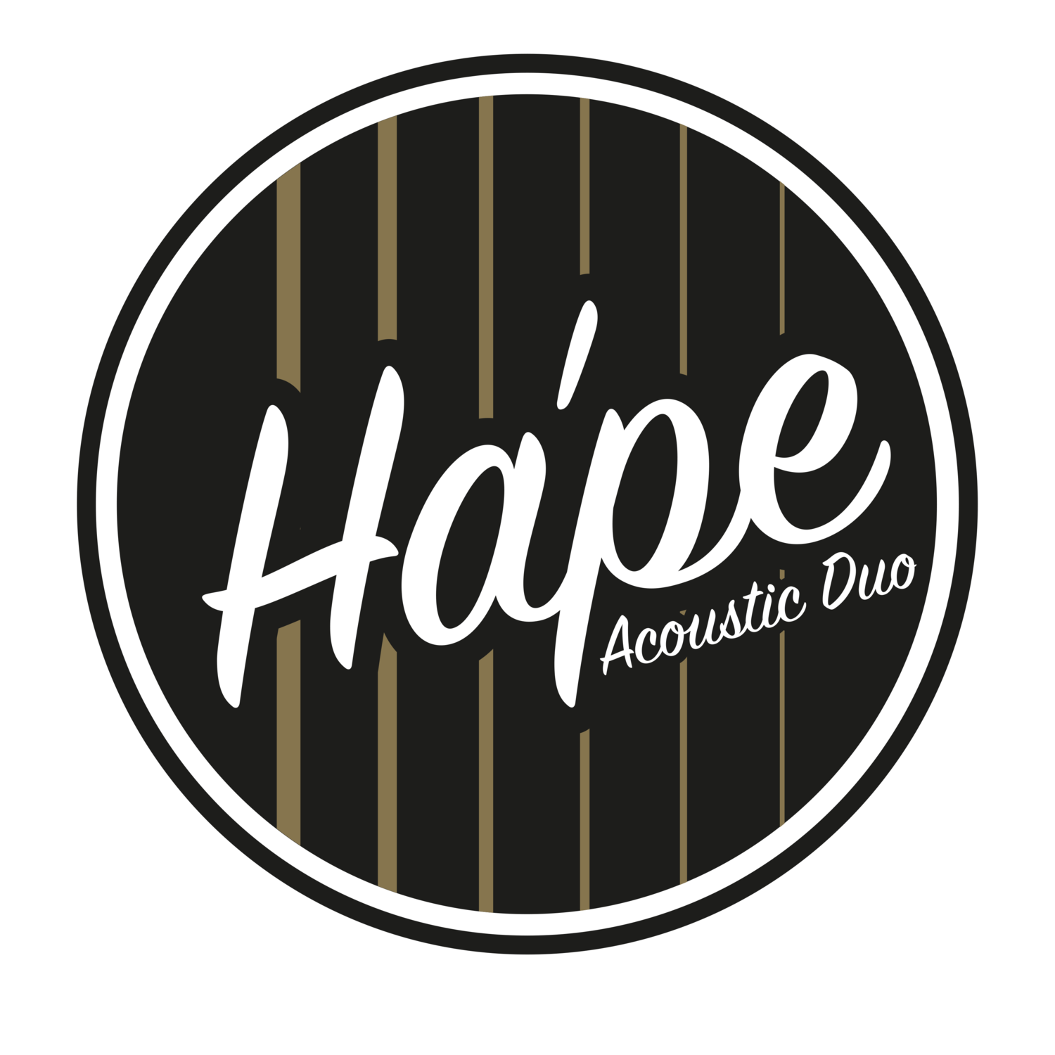Ha'Pe Music Acoustic Duo for weddings & events