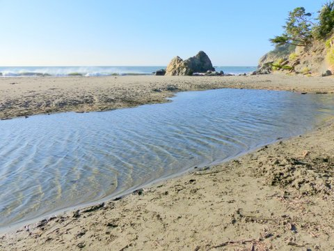 Unless flood waters cut through this sandbar, no salmon could swim into Redwood Creek from the ocean beyond.