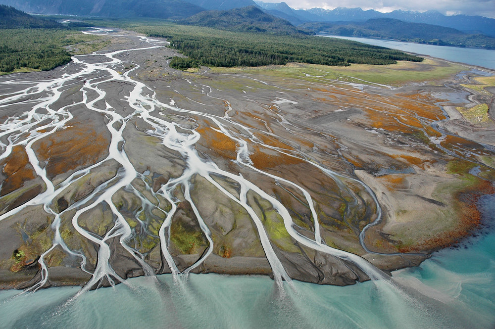 Every estuary is bursting with life — life that gives back to all of us — and Alaska has more estuaries than the entire lower 48 states combined. Kachemak Bay, AK. Photo credit: Alaska Shorezone.