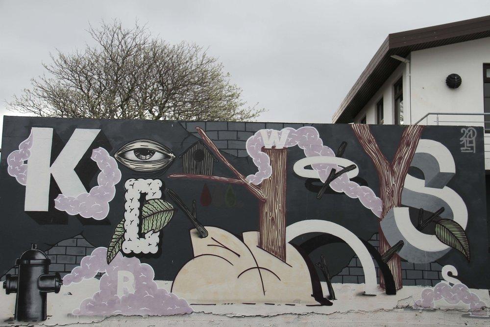 Reykajavik street art