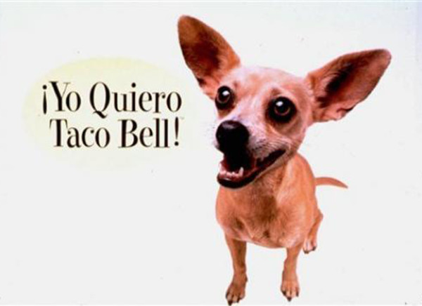 taco_bell_chihuahua-TheWiseLatinaClub