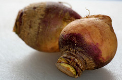 This is a rutabaga. I had to look it up.