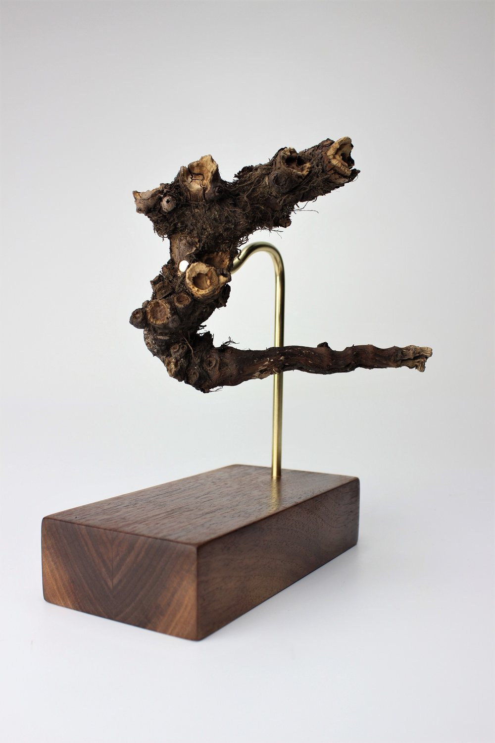 Root Display, 2016   tree root, walnut, brass  Whimsical and deliberate, an homage to the environment.                                                                                                                                                              private collection