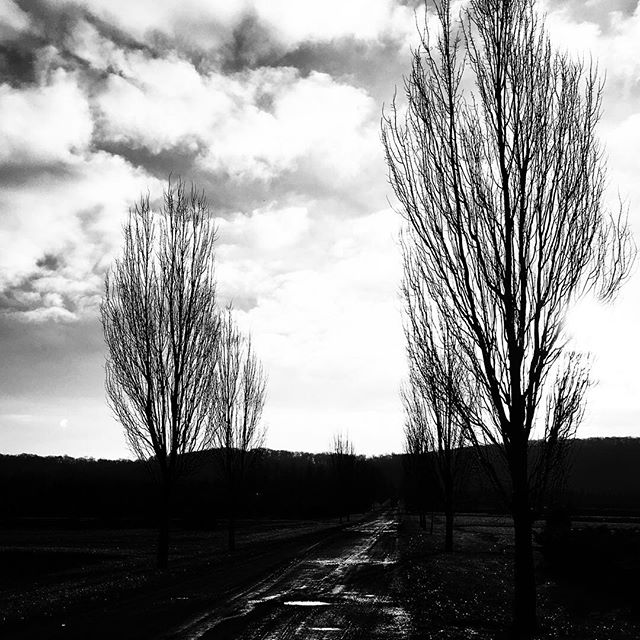Beautiful, cold winter morning. #blackandwhite #landscapephotography