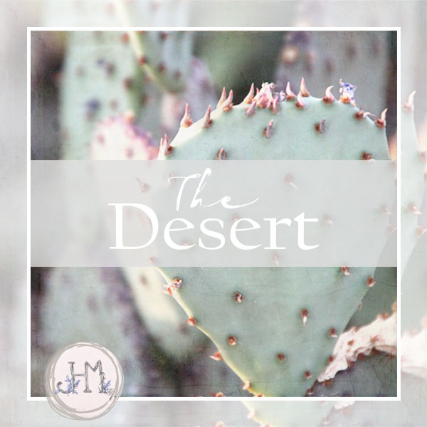 pinterest board cover desert.jpg