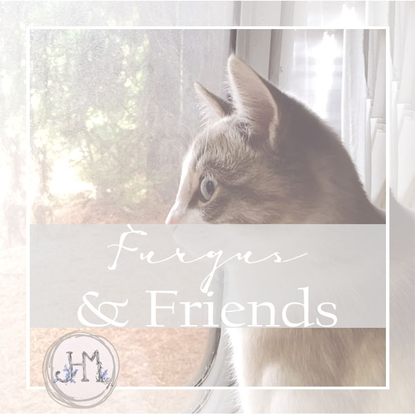 pinterest board cover furgus and friends 1.jpg
