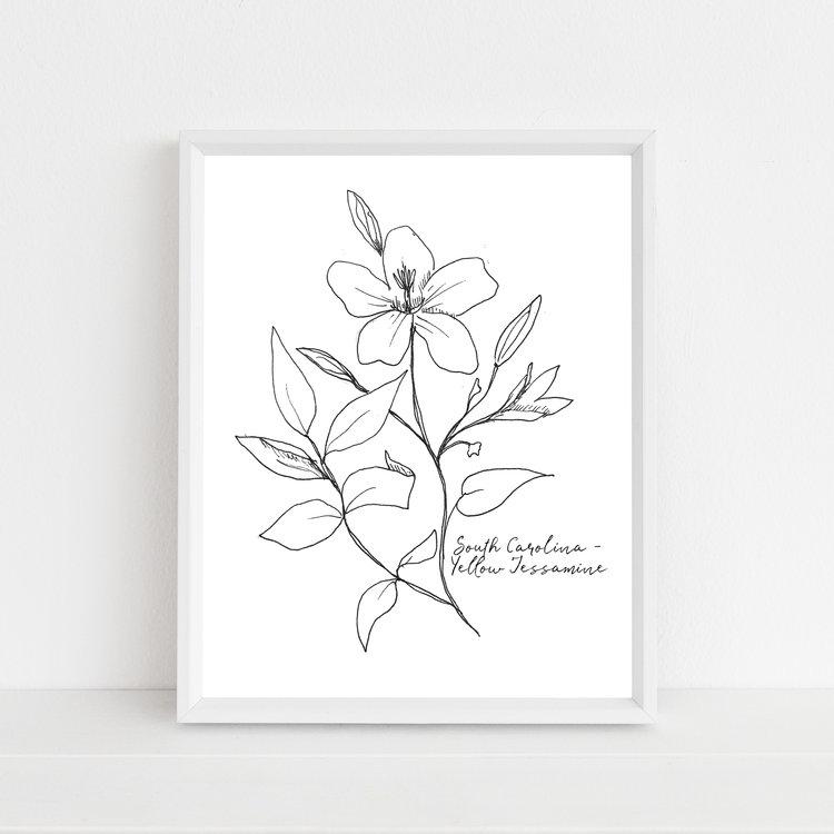 Yellow Jessamine South Carolina State Flower Illustration Print