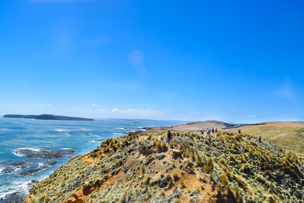 The view of Trefoil and Hunter Island from Woolnorth, Tasmania