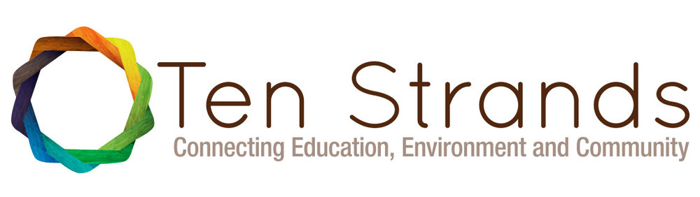 Ten Strands Logo (Hi).jpg