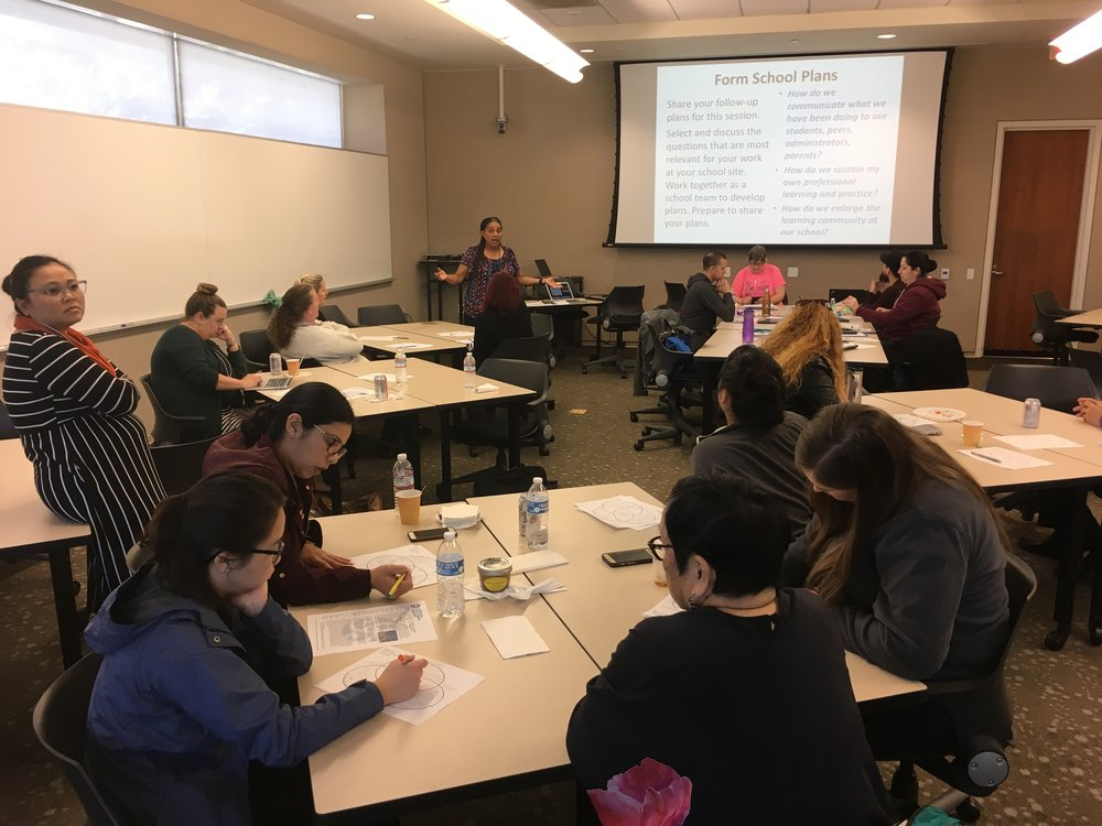 CAPP College Going Culture Program - The California History-Social Science Project, Science Project, Writing Project, Reading & Literature Project, and Global Education Project teamed up to work with high school teachers (2015-2018) to develop disciplinary literacy knowledge and skills for use in the classroom.