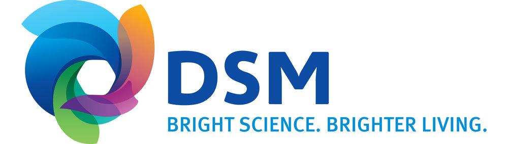 DSM_MasterLogo copy.jpg
