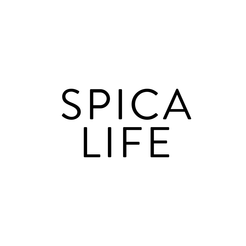 Surprising Must Have Gear Spica Life Download Free Architecture Designs Scobabritishbridgeorg