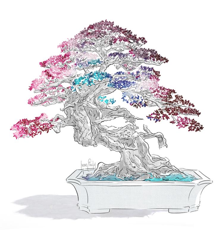 The-Bonsai.jpg
