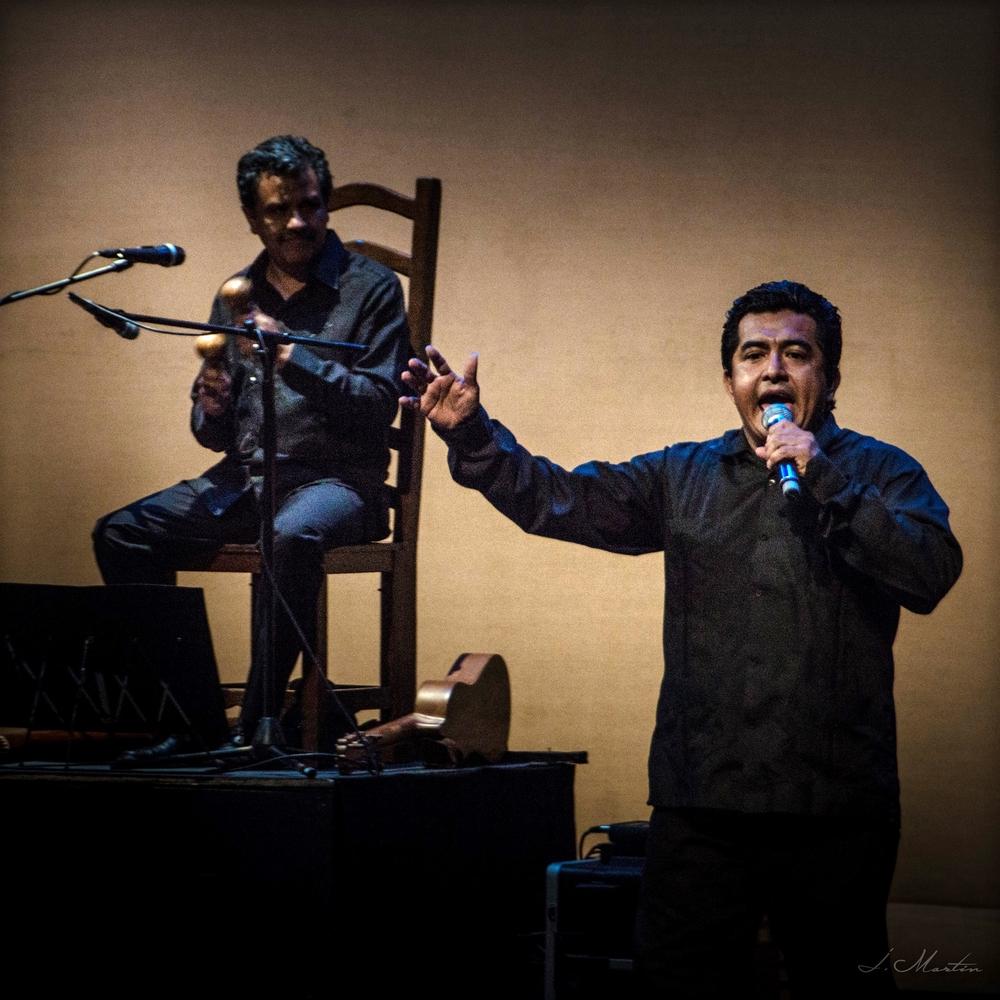 Vaivén: Son, Barroco y Flamenco, Teatro de la Ciudad Esperanza Iris oct. 2014