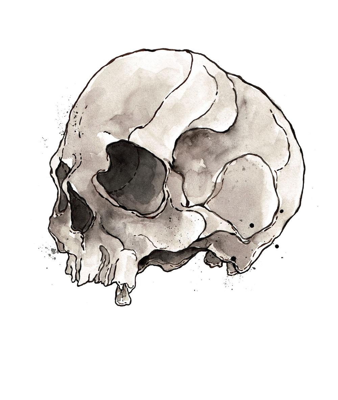 Skull Study Profile, SCA Graduation, 2014