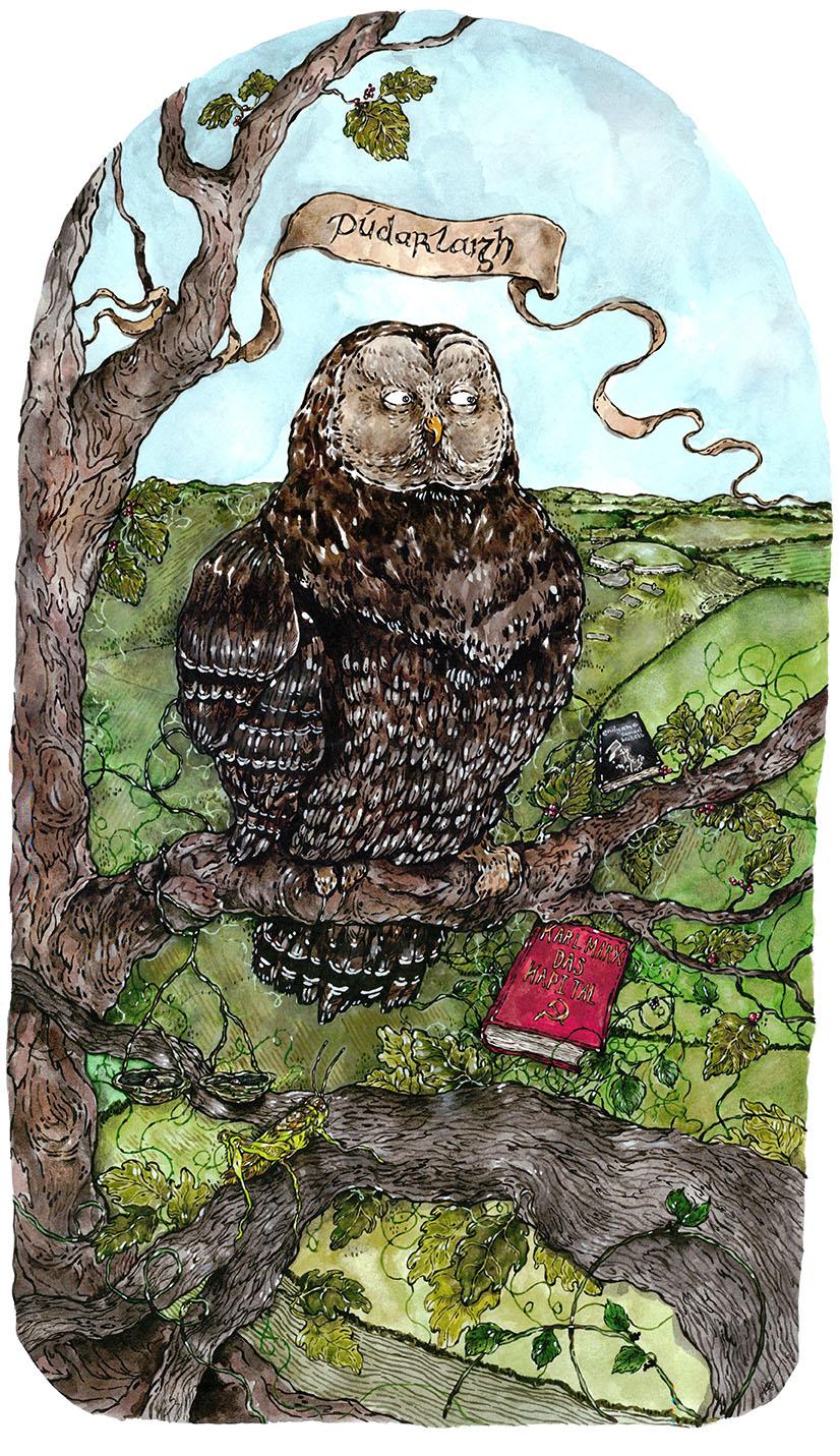 Joe Owl