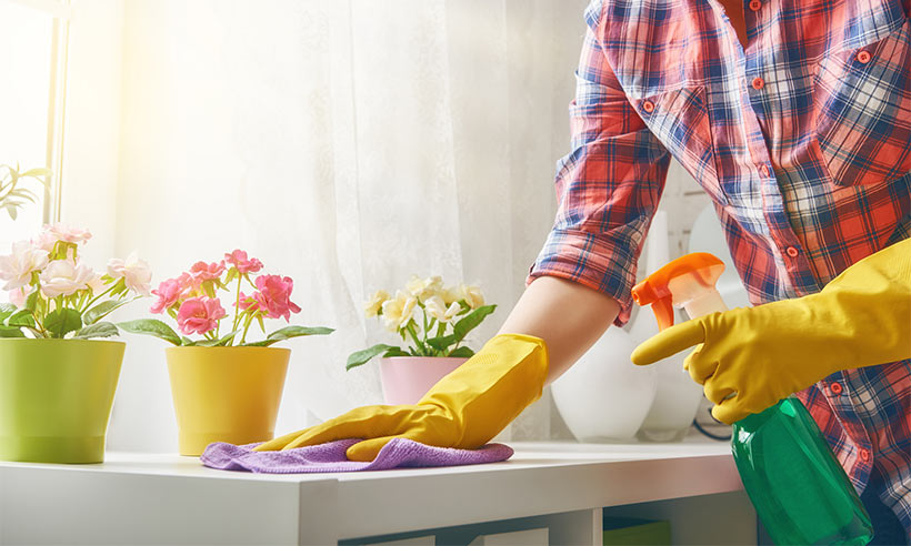 spring cleaning services n Seattle.jpg