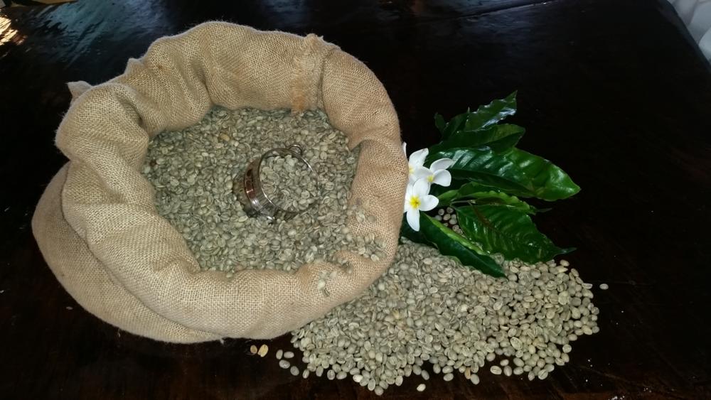 green coffee 1 klr.png
