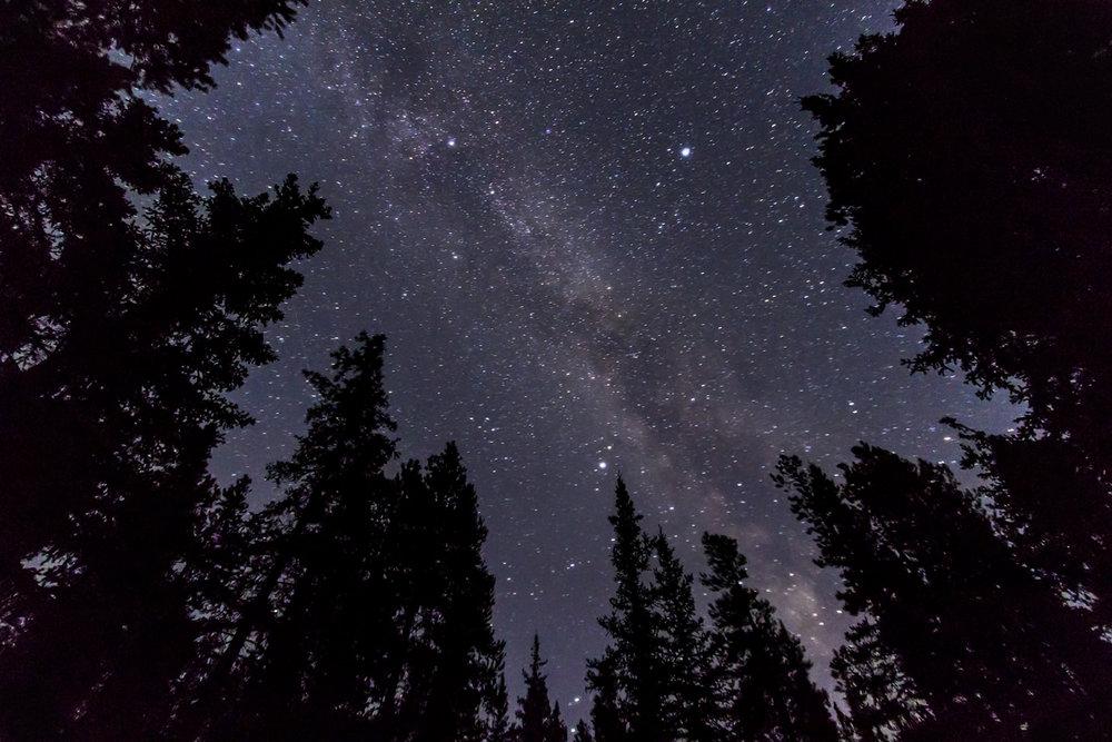 summer-triangle-thru-trees-3-sept-8-2012.jpg