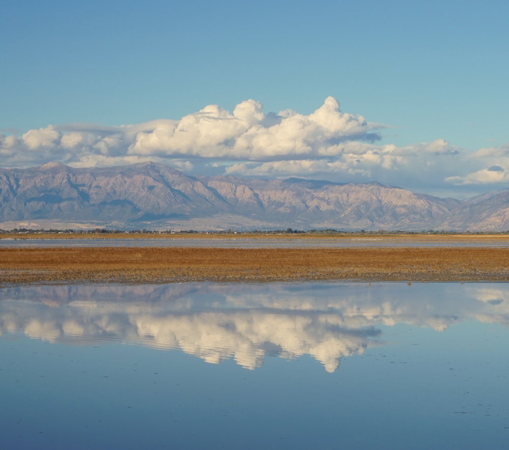 A view of the Great Salt Lake from Antelope Island, Utah