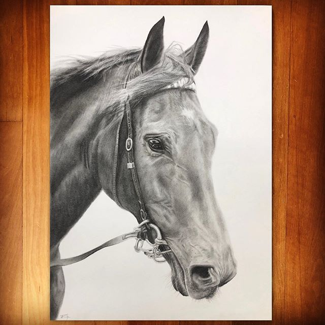 Plot Twist 🐴, charcoal on paper.  A lovely private commission for a lovely lady.  Still a few openings for commissions before Xmas, but hurry - time is running out! 👨🏽‍🎨