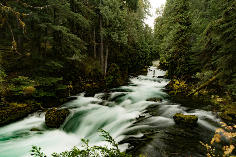 MacKenzie River Rapids
