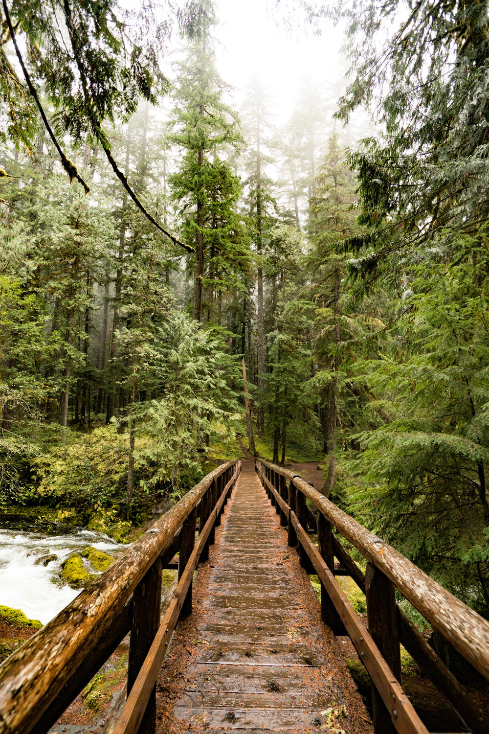 Bridge to Bagby Hot Springs