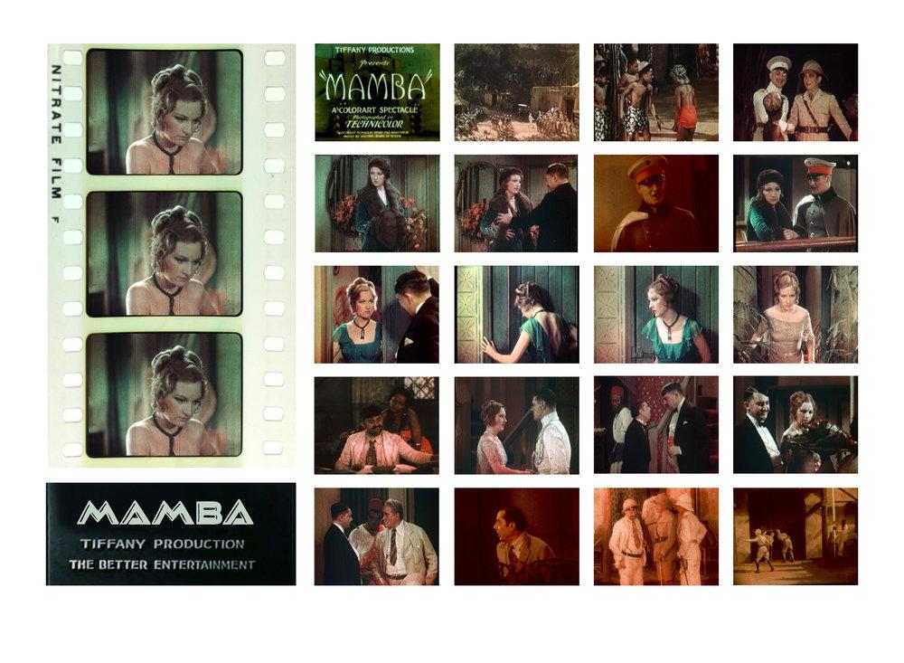 MAMBA_SS Image temp13.jpg