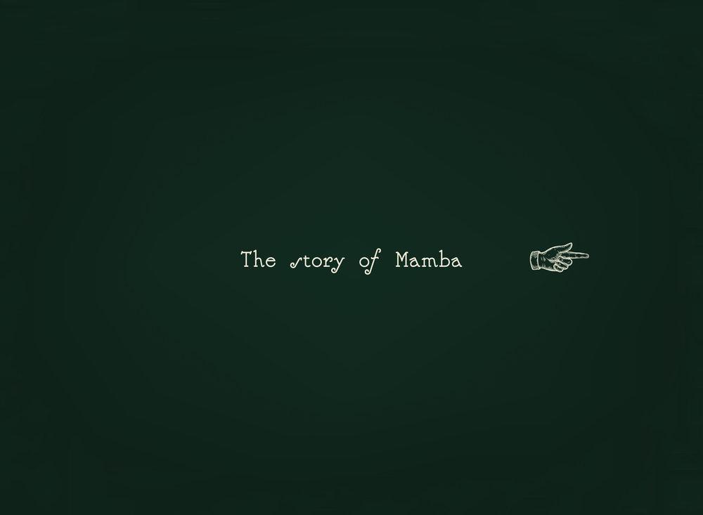 MAMBA_SS Directional.jpg