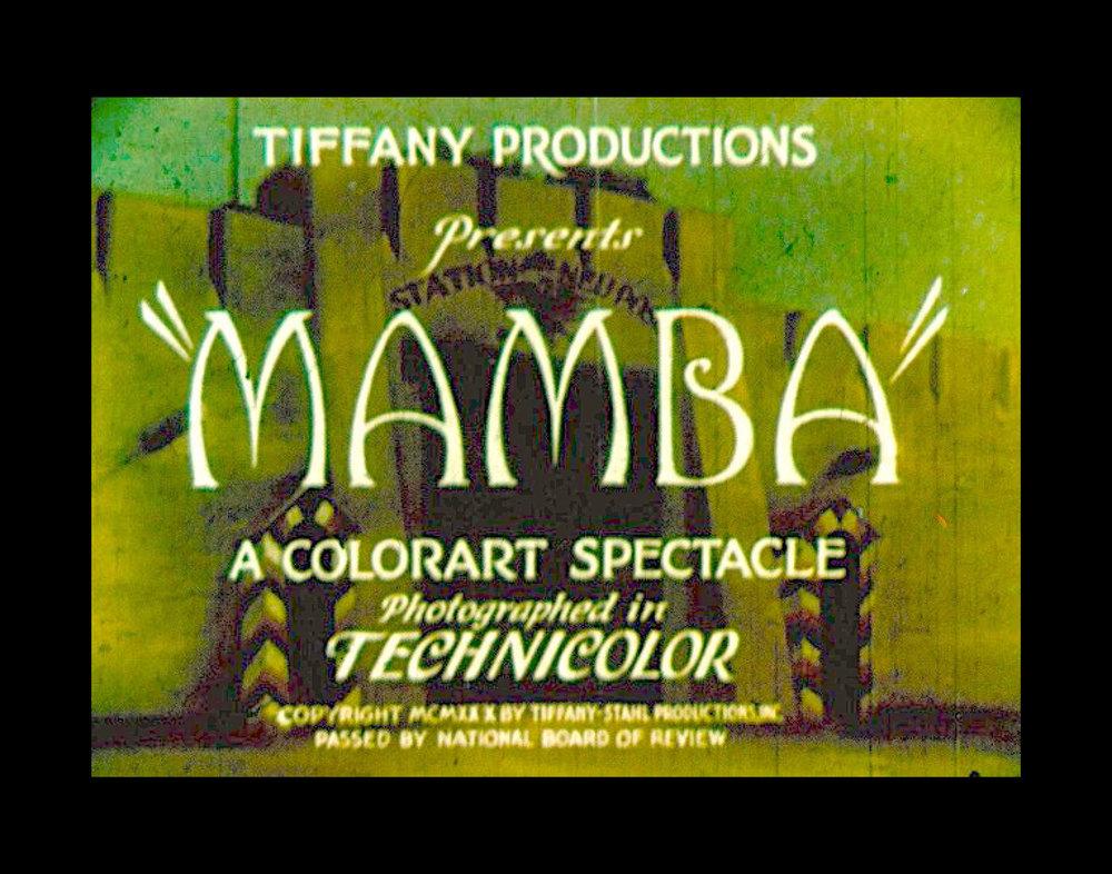MAMBA_SS Image temp9.jpg