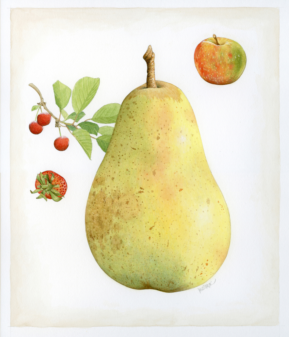 Fruit finish wb.jpg