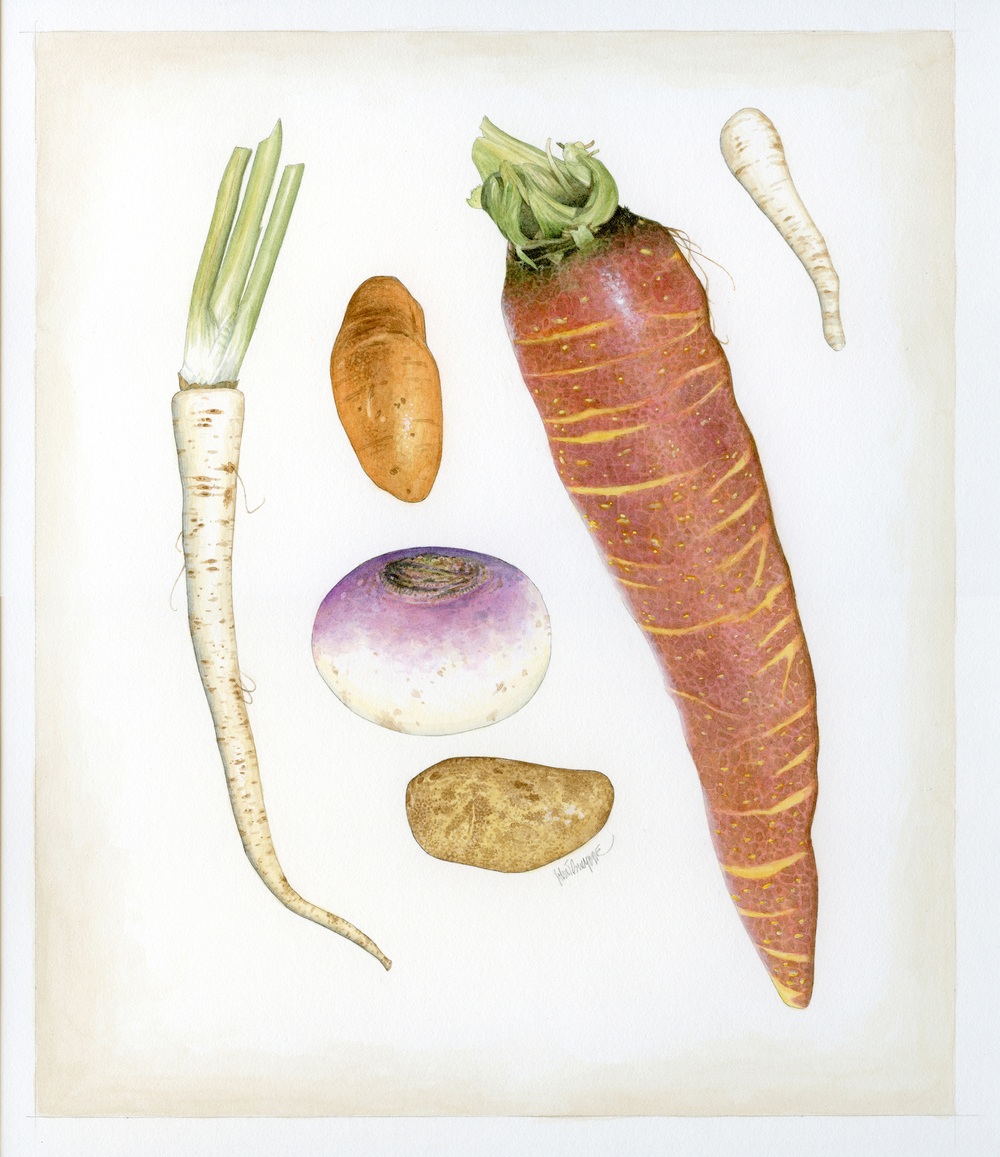 Root Vegetables finish wb.jpg