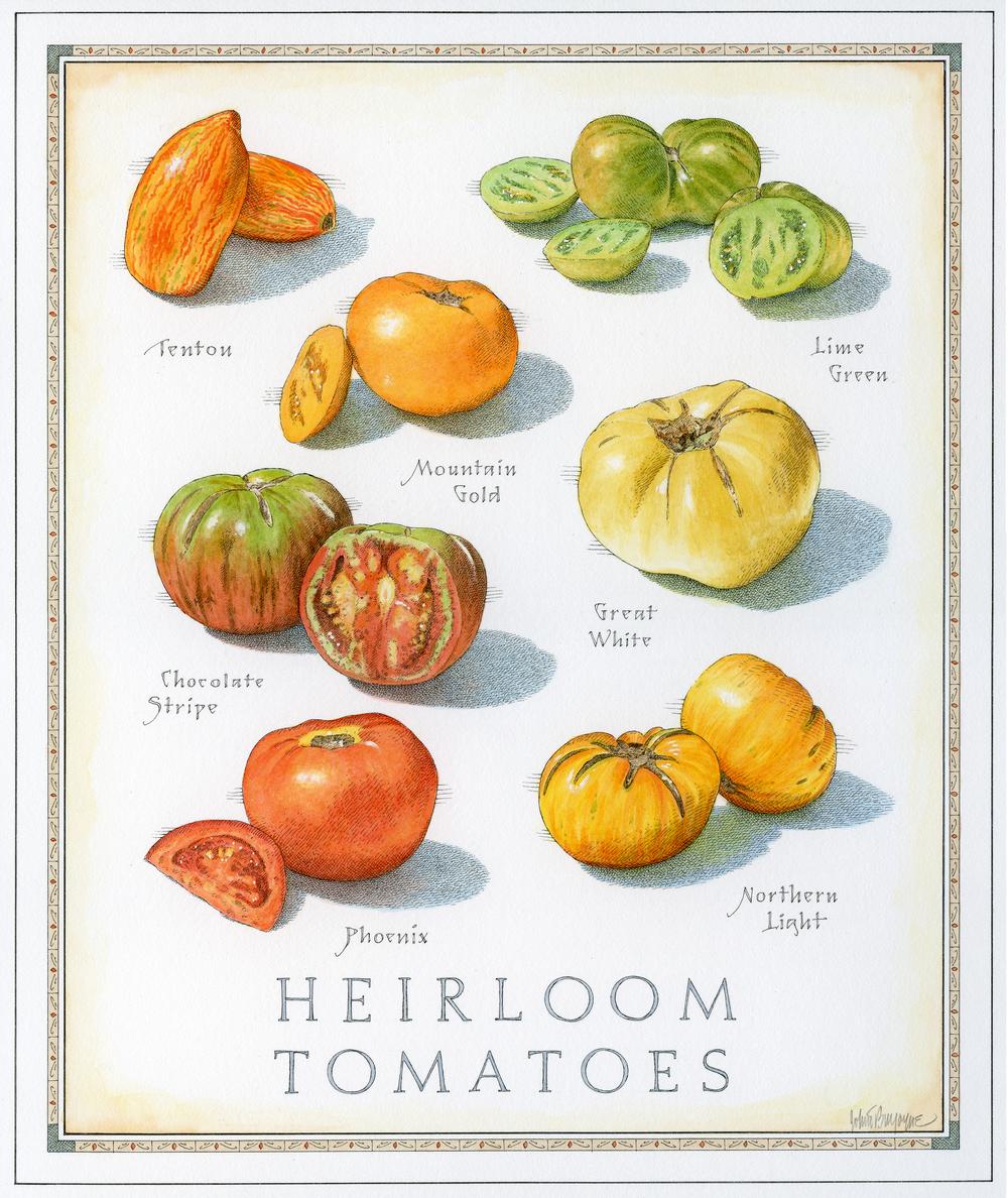 Heirloom Tomatoes  small 7 12.jpg