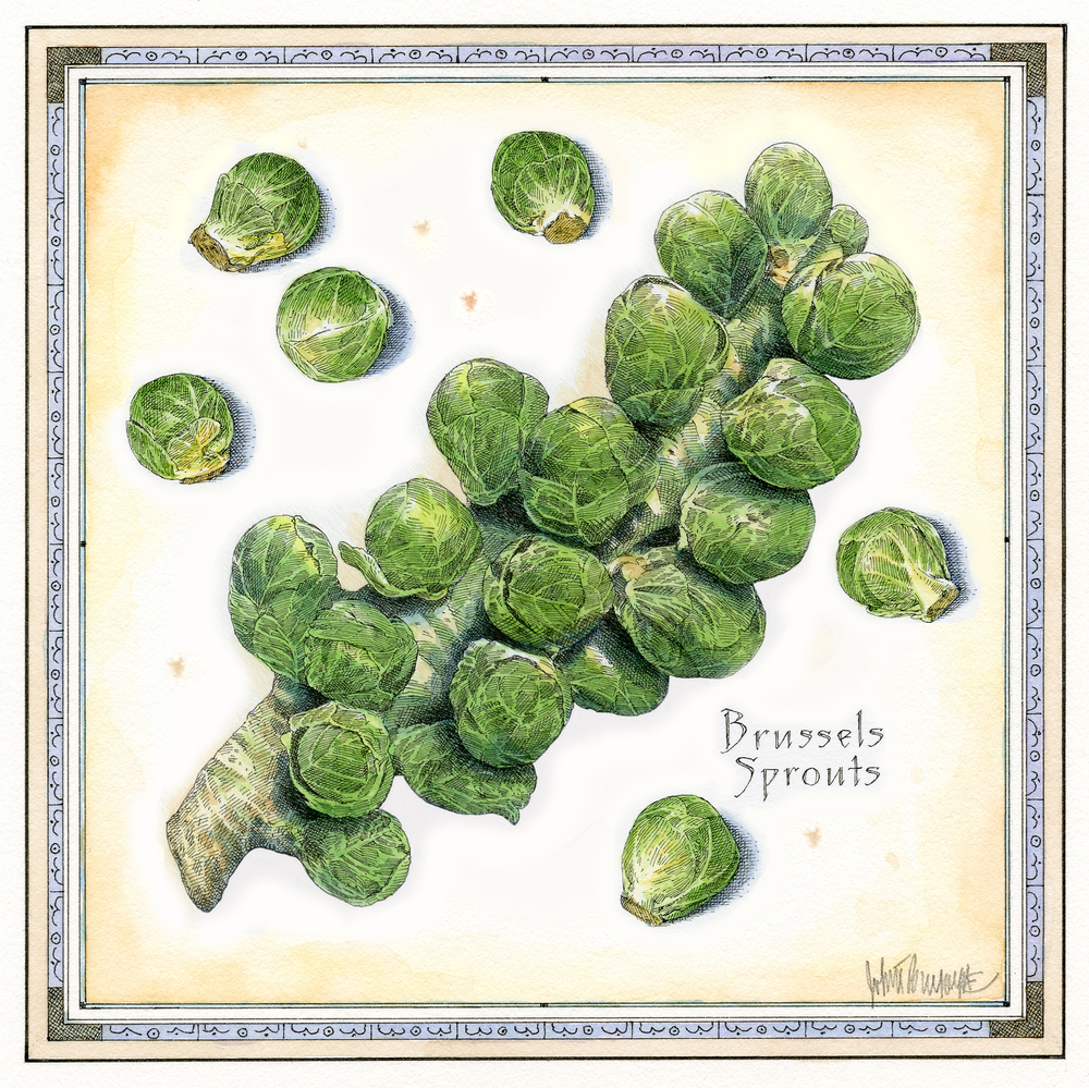 Brussels Sprouts finish wb.jpg