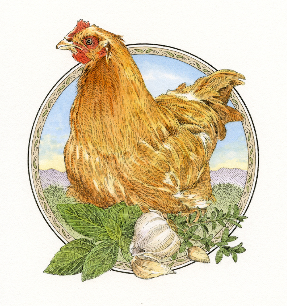 Chicken Brine finish small.jpg